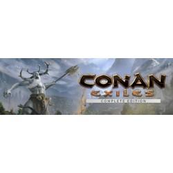 Conan Exiles STEAM PC DOSTĘP DO KONTA WSPÓŁDZIELONEGO - OFFLINE