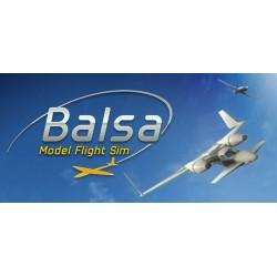 Balsa Model Flight...